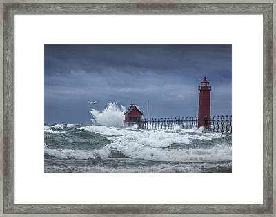 Flying Gull In A November Storm On Lake Michigan By The Grand Haven Lighthouse Framed Print by Randall Nyhof