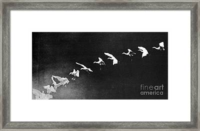 Flying Heron, 1886 Framed Print