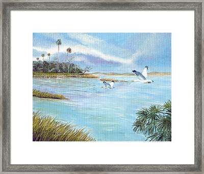 Flying High Framed Print by Dorothy Riley