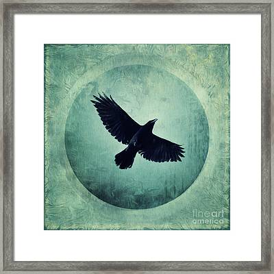 Flying High Framed Print by Priska Wettstein