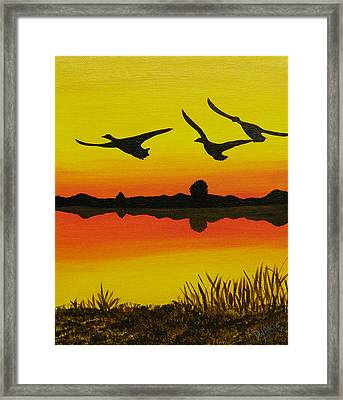 Flying Home Framed Print by Doug Wilkie