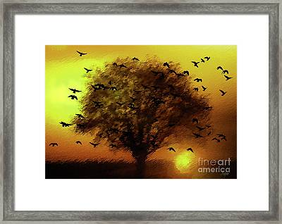 Flying Home To Roost Framed Print