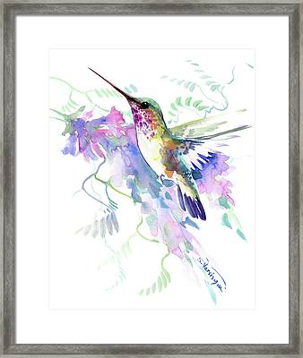 Flying Hummingbird And Soft Purple Pink Flowers Framed Print