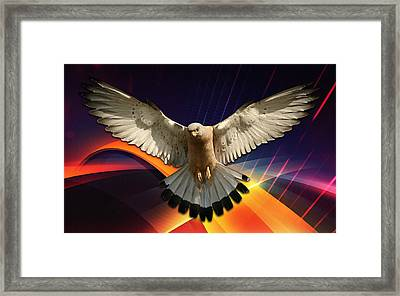 Flying In A Abstract Dream Framed Print