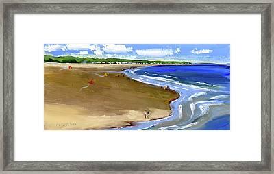 Flying Kites At The Beach Framed Print