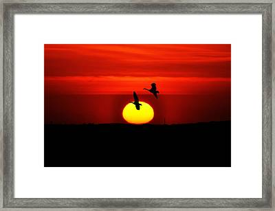 Flying North At Sunrise Framed Print by Bill Cannon