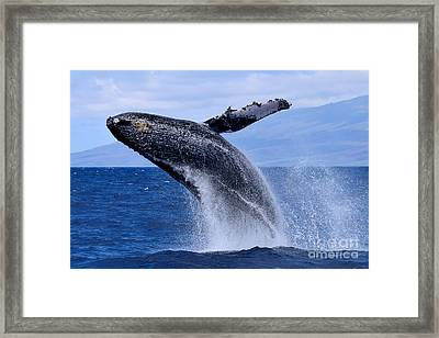 Flying Ocean Giant Framed Print by Jackson Kowalski