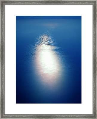 Flying Over The Ocean Framed Print