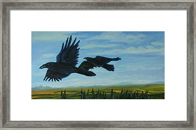 Flying Over The Tanana Flats Framed Print by Amy Reisland-Speer