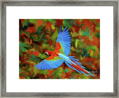 Flying Parrot Framed Print