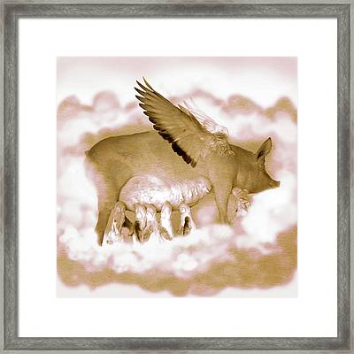 Flying Pigs Framed Print by Kd Neeley
