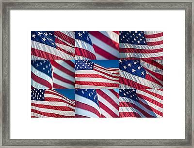 Flying Proud Framed Print by Steve Gadomski