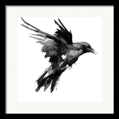Ravens Drawings Framed Prints