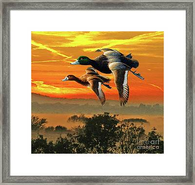 Flying South Framed Print by Jerry L Barrett