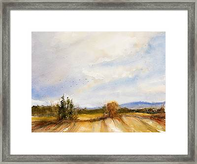 Flying South Framed Print by Judith Levins