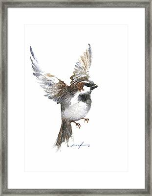 Flying Sparrow Watercolor Framed Print by Nitin Singh