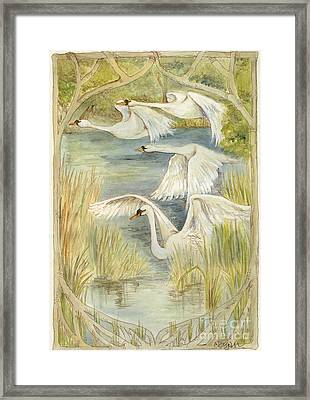 Flying Swans Framed Print by Morgan Fitzsimons