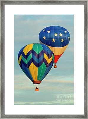 Flying The Colors Framed Print