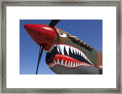 Flying Tiger Plane Framed Print by Garry Gay