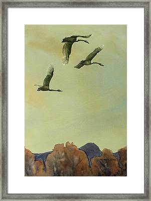 Flyover Framed Print by Kris Parins