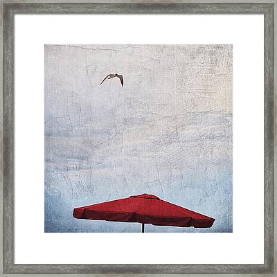 Flyover Framed Print