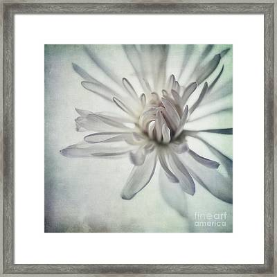Focus On The Heart Framed Print