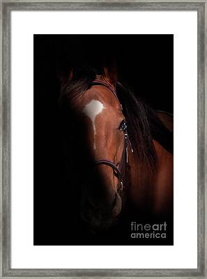 Focus On The Light Framed Print by Jacque The Muse Photography