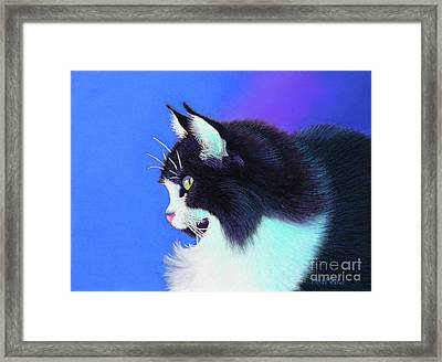 Focus Framed Print by Tracy L Teeter