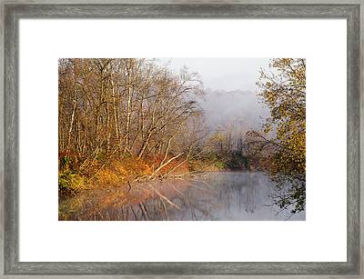 Fog And Fall Framed Print by Ann Bridges