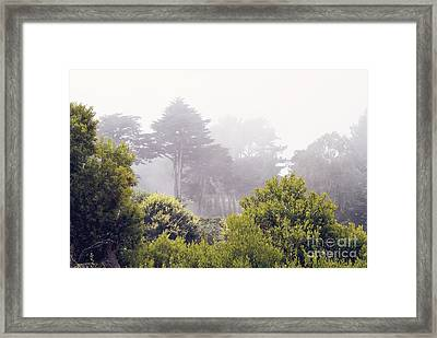 Framed Print featuring the photograph Fog At Lands End by Cindy Garber Iverson