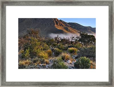 Fog At Sunrise - Guadalupe Mountains Framed Print by Stephen  Vecchiotti
