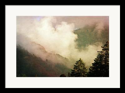 Susann Serfezi Framed Prints