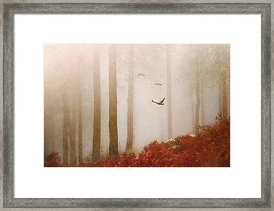 Fog Framed Print by Elena E Giorgi