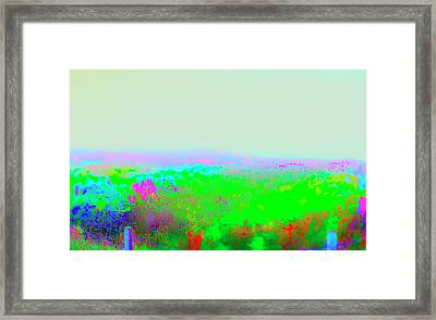 Fog Flowers  IIi Framed Print