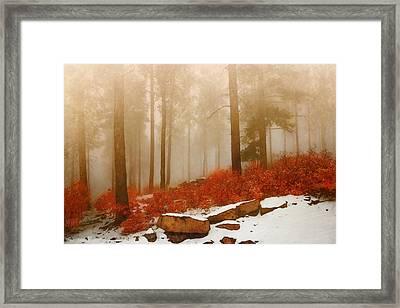 Fog II Framed Print by Elena E Giorgi