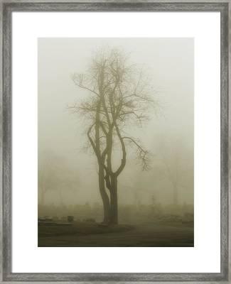 Fog In A Graveyard Framed Print