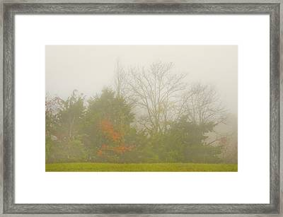 Framed Print featuring the photograph Fog In Autumn by Wanda Krack