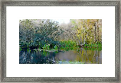 Foggy Swamp Framed Print by Jeffrey Hamilton