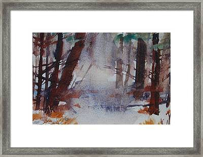 Fog In The Woods Framed Print