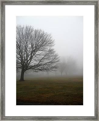 Fog Framed Print by John Scates
