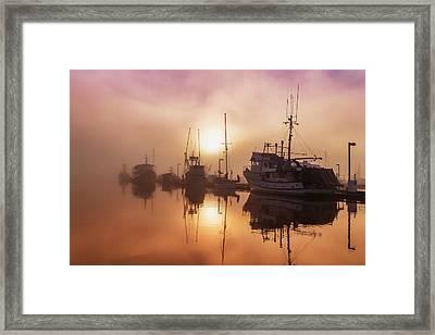 Fog Lifting Over Auke Bay Harbor Framed Print by John Hyde