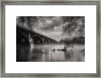 Fog On The Congaree Framed Print by Bruce Willhoit