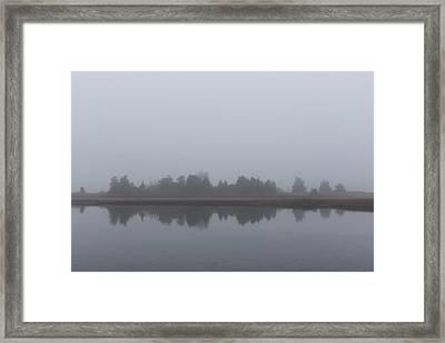 Fog On The Marsh Framed Print by Andrew Pacheco
