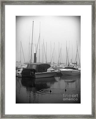 Fog On The Rhine 2 Grayscale Framed Print