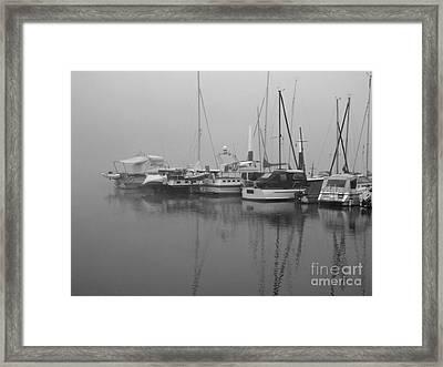 Fog On The Rhine  Grayscale Framed Print