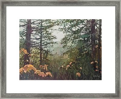 Fog Over Croisan Creek Framed Print by Jenny Armitage