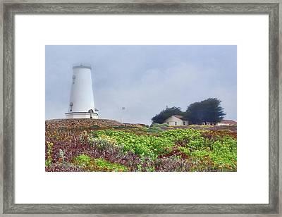 Framed Print featuring the photograph Fog - Piedras Blancas by Nikolyn McDonald