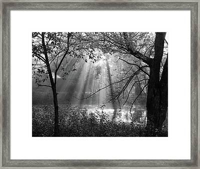 Fog Rays Framed Print