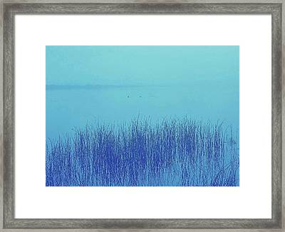 Framed Print featuring the photograph Fog Reeds by Laurie Stewart