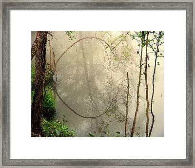 Fog Reflections Framed Print by Dottie Dees